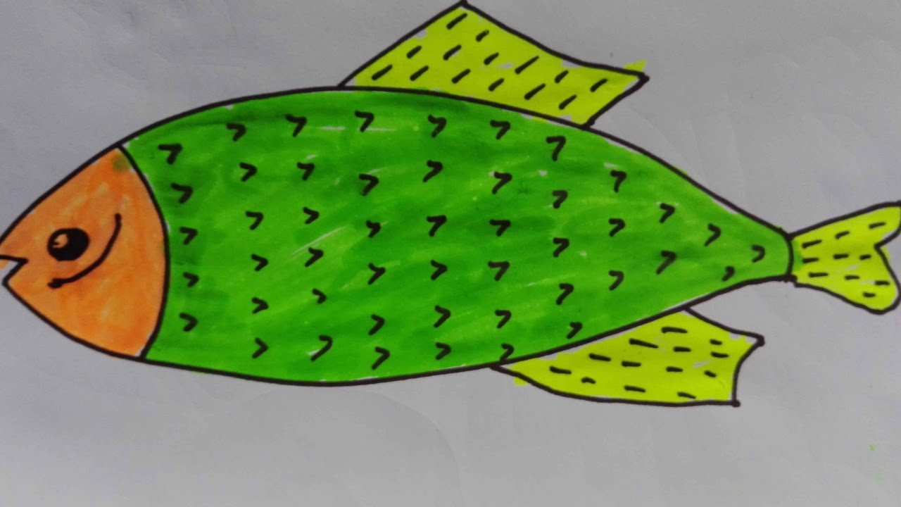 How to draw a fish-draw a realistic fish-fish drawing for colouring ...