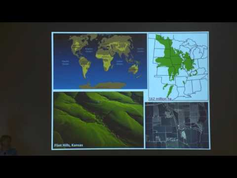 Dr. Kelly Kindsher - Native Medicinal Plants of the Prairie