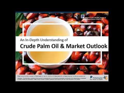 An In Depth Understanding of Crude Palm Oil & Market Outlook