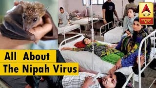 All You Need To Know About The Nipah Virus | ABP News