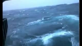 Man Washed Away Filming Rough Seas