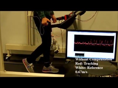 Virtual Body-Weight Support from a Powered Ankle Exoskeleton