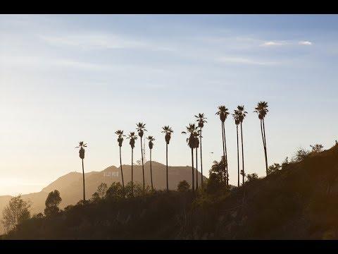 Magic Mountain & Little Tokyo || A Week in LA