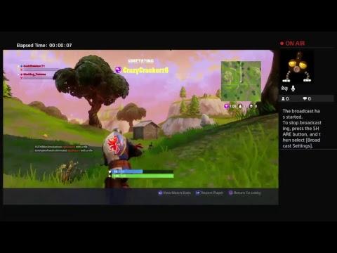 Fortnite teaming ban