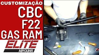 Customização da Carabina de Pressão CBC F22 GII GAS RAM Elite Airguns