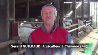 Gérard  Guilbaud et la transition vers la