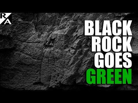 $9 Trillion Climate Gorilla: Blackrock Pushes Big Business toward Carbon-Neutral Future