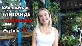 Тайская студенческая виза: оформление и жизнь в Таиланде по ней. Паттайе 2018