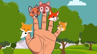 Finger Family Song | Fox Finger Family | Daddy Finger Nursery Rhymes For Babies And Toddlers