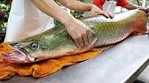 Thai mat - Jätte Flod Monster Amazon fisk ceviche Bangkok skaldjur Thailand