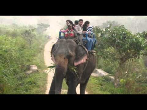 India Mumbai Heritage Assam Package Holidays Travel Guide Travel To Care