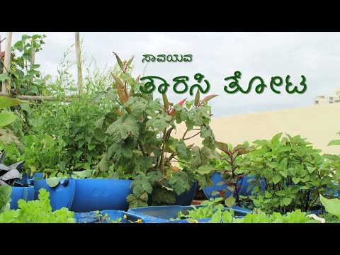 Organic Terrace Garden - Kannada