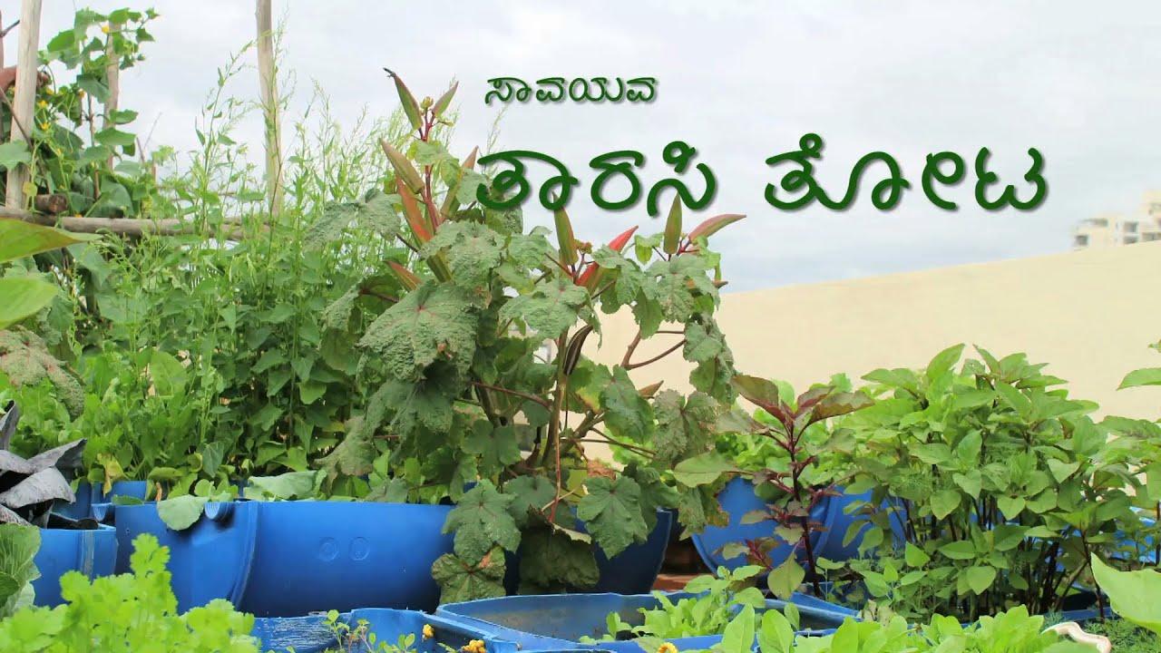 Organic Terrace Garden Kannada Youtube