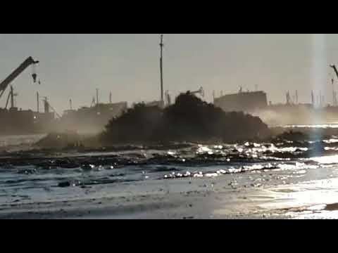 Экологическая Катастрофа в Каспийском Море