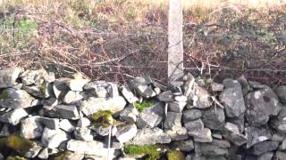 Fertilising a Garden Bed with Seaweed - A Permaculture video