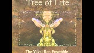 Andalusian by the Yuval Ron Ensemble