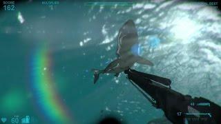 SHARK ATTACK: ATAQUES DE TIBURONES