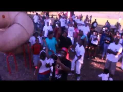 2015 Hamilton Park Block Party (North Dallas)