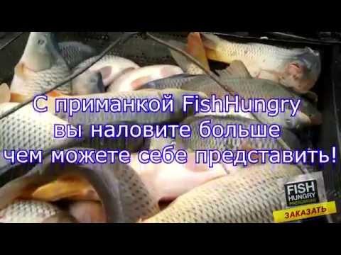 Приманка для рыбы отзывы