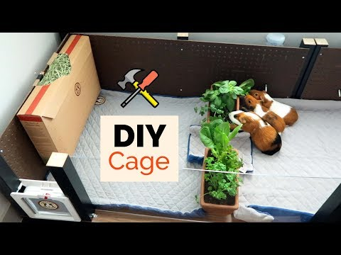 Building a Cage out of IKEA tables | GuineaDad