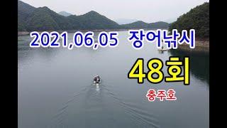 장어낚시48회-충주호,서유석낚시터,DNK RC,말지렁이,장어인밴드,쉬리피싱,댐낚시,Eel Fishing