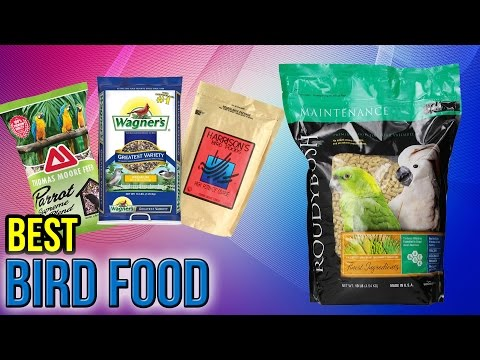 10 Best Bird Food 2017