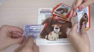 Тайная жизнь домашних животных. Собираем коллекцию наклеек, часть 1