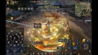 Black Desert Online- Blader Combo GuideLine