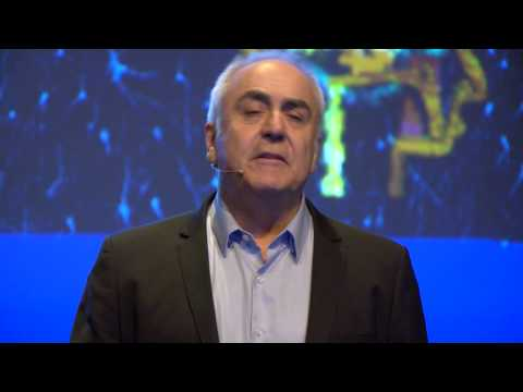 El cerebro, ¿el gran desconocido? Javier de Felipe at TEDxValladolid