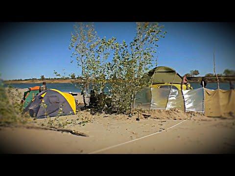 Рыбалка на Сазана свежее видео 2019 года. Соленое Займище Сазан Карп Карпфишинг Нижняя Волга Август