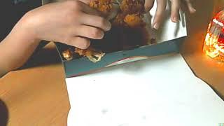 황금올리브 닭다리만 있는거 쁘니먹방asmr