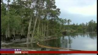 GIANT SINKHOLE SWALLOWS TREES - BBC NEWS