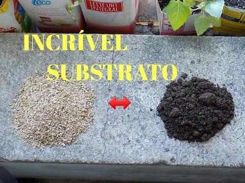 Germine Todas suas sementes!!! Com esse Substrato…