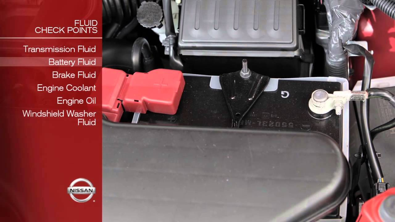 small resolution of 2013 nissan cube fluid check points