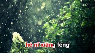 Mưa gió mịt mù - Triệu Vi karaoke beat 烟雨濛濛 伴奏