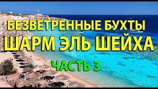 Безветренные бухты Шарм Эль Шейха сезон 2019 2020 3 Часть