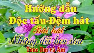 Hướng Dẫn Đệm Hát Organ Những Đồi Hoa Sim Tone Dm và Am