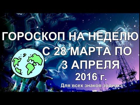 НПЦ Мандрагора -= г. Владивосток, ул. Посьетская 23, тел