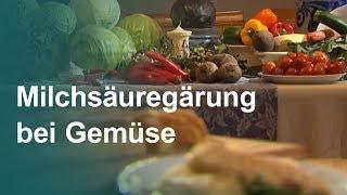Haltbar und voller Vitamine Milchsuregrung bei Gemse  Unser Land  BR Fernsehen