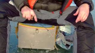 Зимняя Рыбалка на Окуня Поклёвка Perch Bite on Ice Fishing
