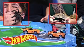 Download Hot Wheels Rocket League Rc Rivals Toy Real Life