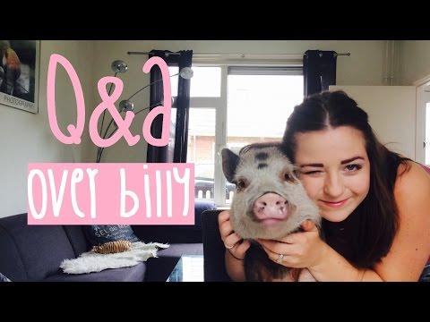 Q&A: Questions & Answers ✿ meest gestelde vragen over een minivarken als huisdier