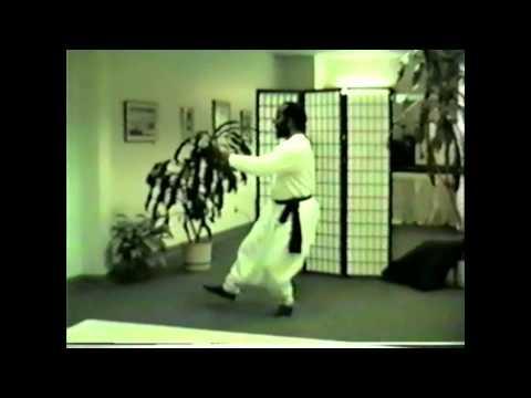 Tao Shih Pei Wo Lun 1998 Tai Chi 24.mp4