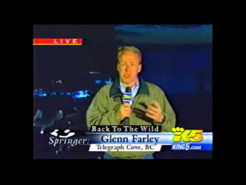 "KING 5 (NBC Seattle) / NBC Nightly News: ""LIVE: Springer the Orca Heading Home!"" (Includes Namgis) 2"