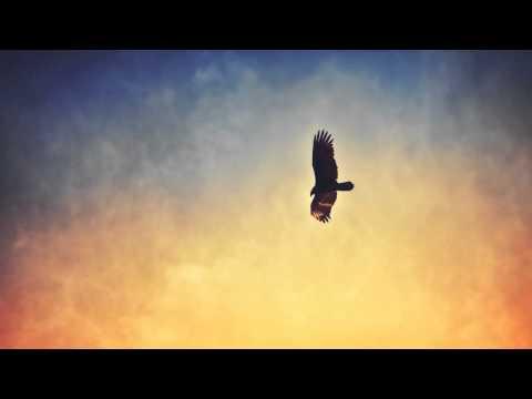 MitiS - Life Of Sin (Pt. 4)