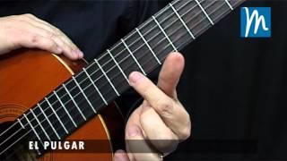 Cómo hacer la cejilla en la Guitarra - Técnica básica para formar las cejillas
