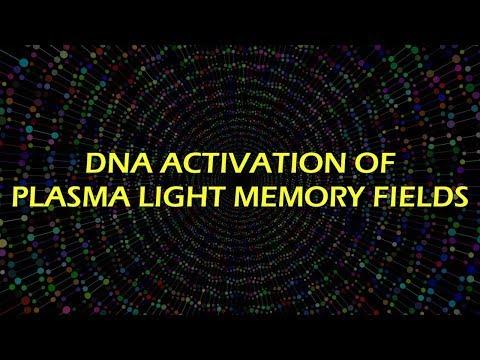 DNA Activation of Plasma Light Memory Fields