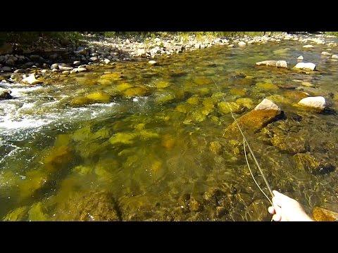 West Walker River Fly Fishing September