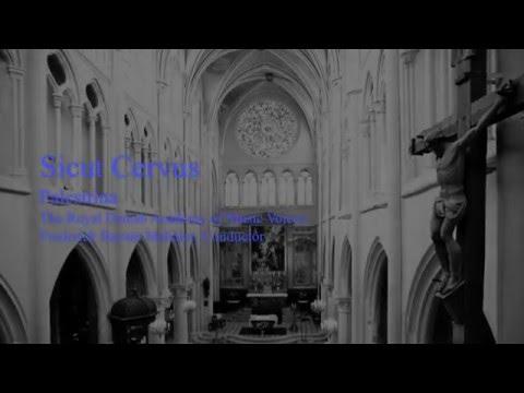 Sicut Cervus | The Royal Danish Academy of Music Voices