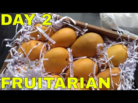 fruitarian-day-2---what-i-ate-today